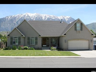 Orem Single Family Home For Sale: 538 N 950 E