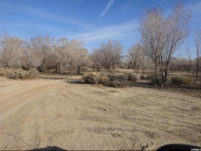 Carbon County Commercial Lots & Land For Sale: 320 S Us Hwy 6