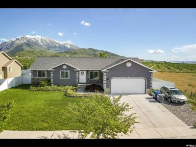 Santaquin Single Family Home For Sale: 201 W 580 S