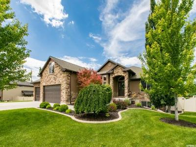 Davis County Single Family Home For Sale: 908 S View Crest Ln