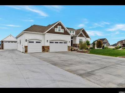 Davis County Single Family Home For Sale: 2279 N 3430 W