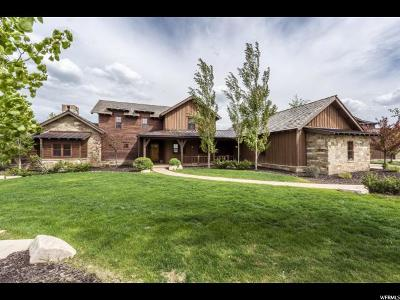 Wasatch County Single Family Home For Sale: 3024 E Painted Bear Trl