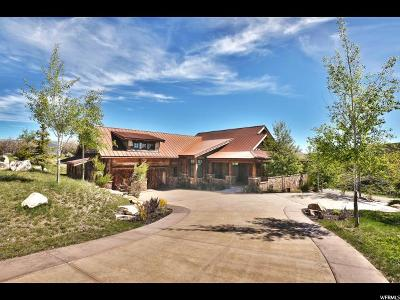 Park City Single Family Home For Sale: 9294 Dye Cabins Dr #16