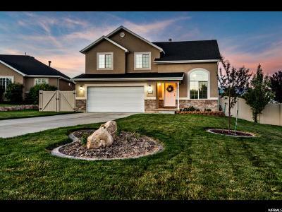 Saratoga Springs Single Family Home For Sale: 408 W Cinnamon Cir N