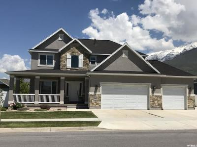 Orem Single Family Home For Sale: 246 W 1340 N