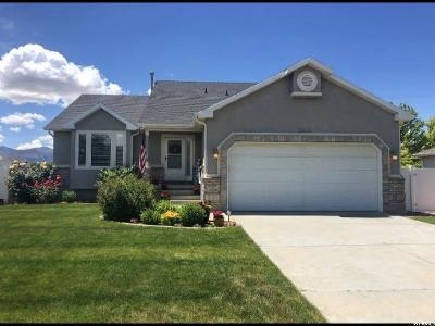 South Jordan Single Family Home For Sale: 10144 S Barnsley Ln
