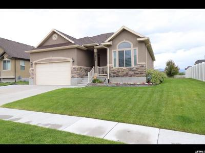 Stansbury Park Single Family Home For Sale: 6591 Skyheigths Dr