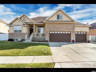 Riverton Single Family Home For Sale: 5099 W Buckeye View Way