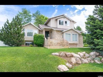 Davis County Single Family Home Under Contract: 1342 Hillsboro Dr