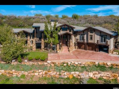 Park City Single Family Home For Sale: 3760 Rising Star Ln #11