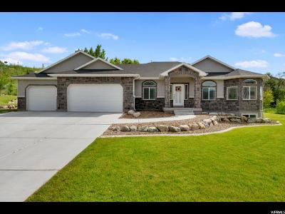 Weber County Single Family Home For Sale: 7555 S 1740 E