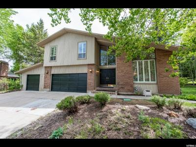 Park City Single Family Home For Sale: 5 Double Jack Ct