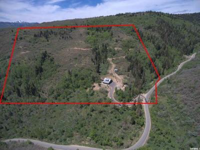 Park City Single Family Home For Sale: 1125 Tollgate Canyon Rd
