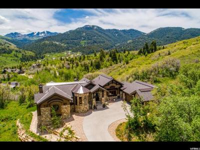 Park City Single Family Home For Sale: 8905 Parley's Ln
