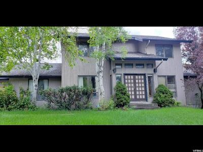 Provo Single Family Home For Sale: 1040 Windsor Dr