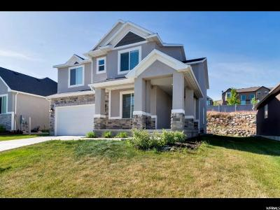 Lehi Single Family Home For Sale: 854 W Valley View Way N #119