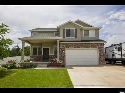 Davis County Single Family Home For Sale: 784 E 2050 S