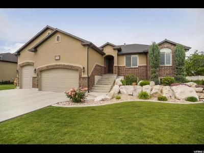 Weber County Single Family Home For Sale: 3727 S 3550 W