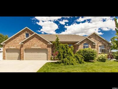 South Jordan Single Family Home For Sale: 10317 S 2840 St W