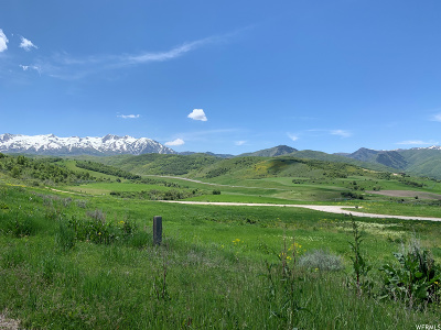 Weber County Residential Lots & Land For Sale: 1681 Bristlecone Ln