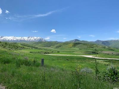 Weber County Residential Lots & Land For Sale: 1671 Bristlecone Ln