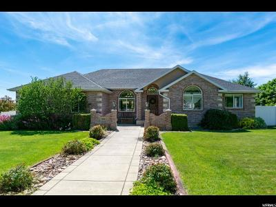 Alpine Single Family Home Under Contract: 908 Andes Dr
