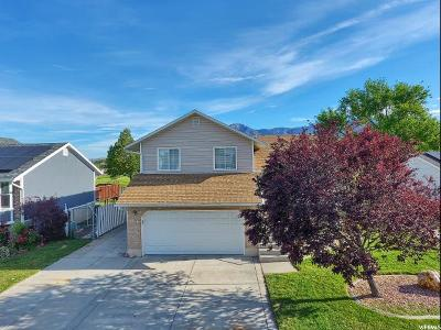 Weber County Single Family Home For Sale: 646 E 650 N