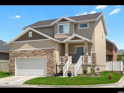 Davis County Single Family Home For Sale: 2311 S 2060 W