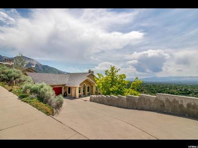 Salt Lake City Single Family Home For Sale: 2498 S Scenic Dr