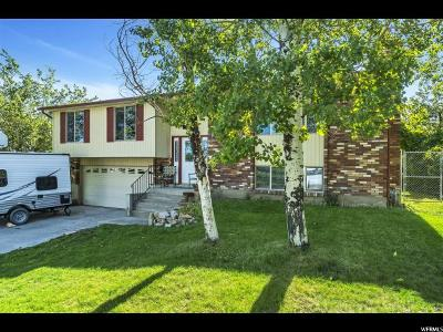 Tooele County Single Family Home For Sale: 13 S Benchview Dr E