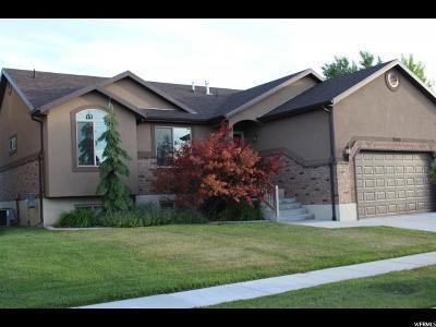 Davis County Single Family Home For Sale: 3399 Princeville Dr
