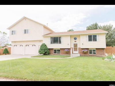 Orem Single Family Home Under Contract: 1564 S Carterville Rd