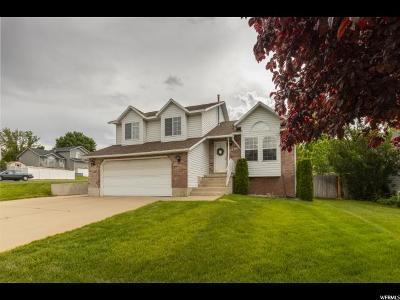 Davis County Single Family Home For Sale: 2190 N 1075 E