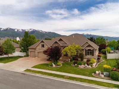 Davis County Single Family Home For Sale: 965 W Chester Ln