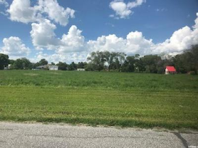 Newton Residential Lots & Land For Sale: 160 E 200 S