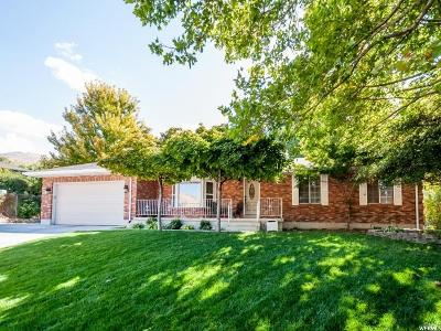 Davis County Single Family Home For Sale: 1142 E 250 S