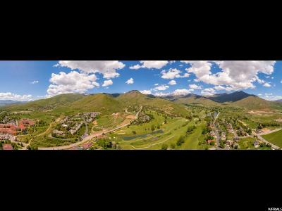 Wasatch County Residential Lots & Land For Sale: 967 W Lime Canyon Way