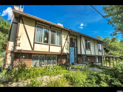 South Weber Single Family Home For Sale: 8292 S Hwy 89 E