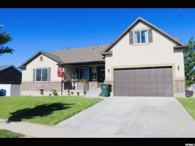 Salt Lake City Single Family Home For Sale: 3283 S Balm Willow W