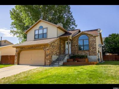 Davis County Single Family Home For Sale: 1131 E 2450 N