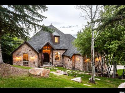 Park City Single Family Home For Sale: 7303 Pine Ridge Dr