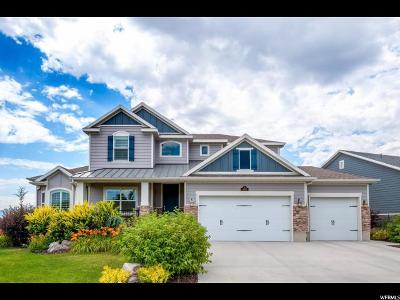 South Jordan Single Family Home For Sale: 4017 W Great Neck S