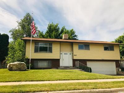 Riverdale Single Family Home For Sale: 927 W 4250 S