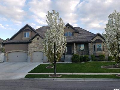 Herriman Single Family Home For Sale: 6951 W Coyote Ridge Cir