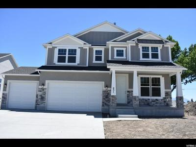 Lehi Single Family Home For Sale: 651 S Creekside Dr