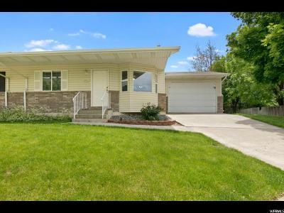 Springville Single Family Home For Sale: 466 E 1050 S