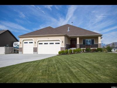Lehi Single Family Home For Sale: 589 N Willow Haven Ave