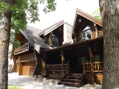Ogden Single Family Home For Sale: 3402 S Tyler Ave. E