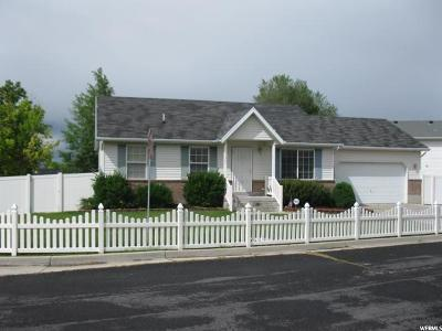 Payson Single Family Home Under Contract: 1207 E Loafer View Dr S