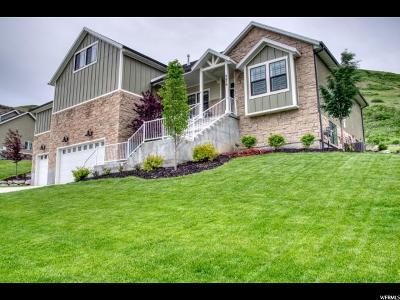 Herriman Single Family Home For Sale: 6679 W Buck Ridge Dr S